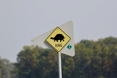 sign of Summer road sign