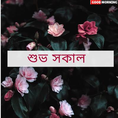 good morning bengali kobita