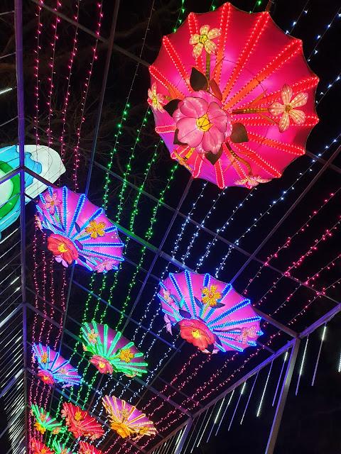 Festival Lanternes Gaillac Blog Hélidée Ciel illuminé Fleurs