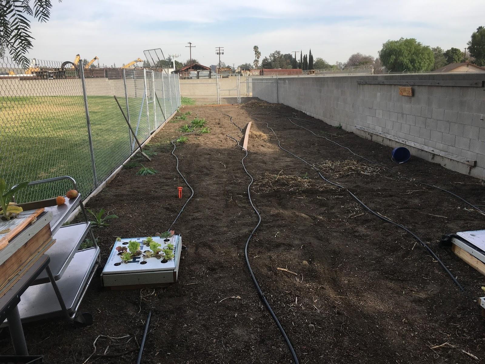 Hillside High Family Farm Phase 1 Of The Garden Redesign