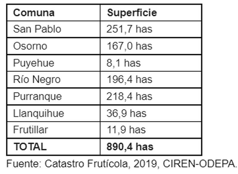 Superficie en la X región