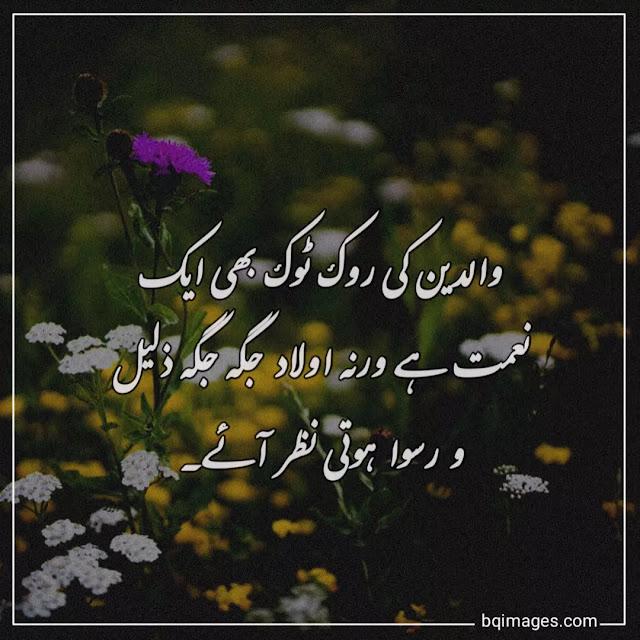 best parents quotes in urdu
