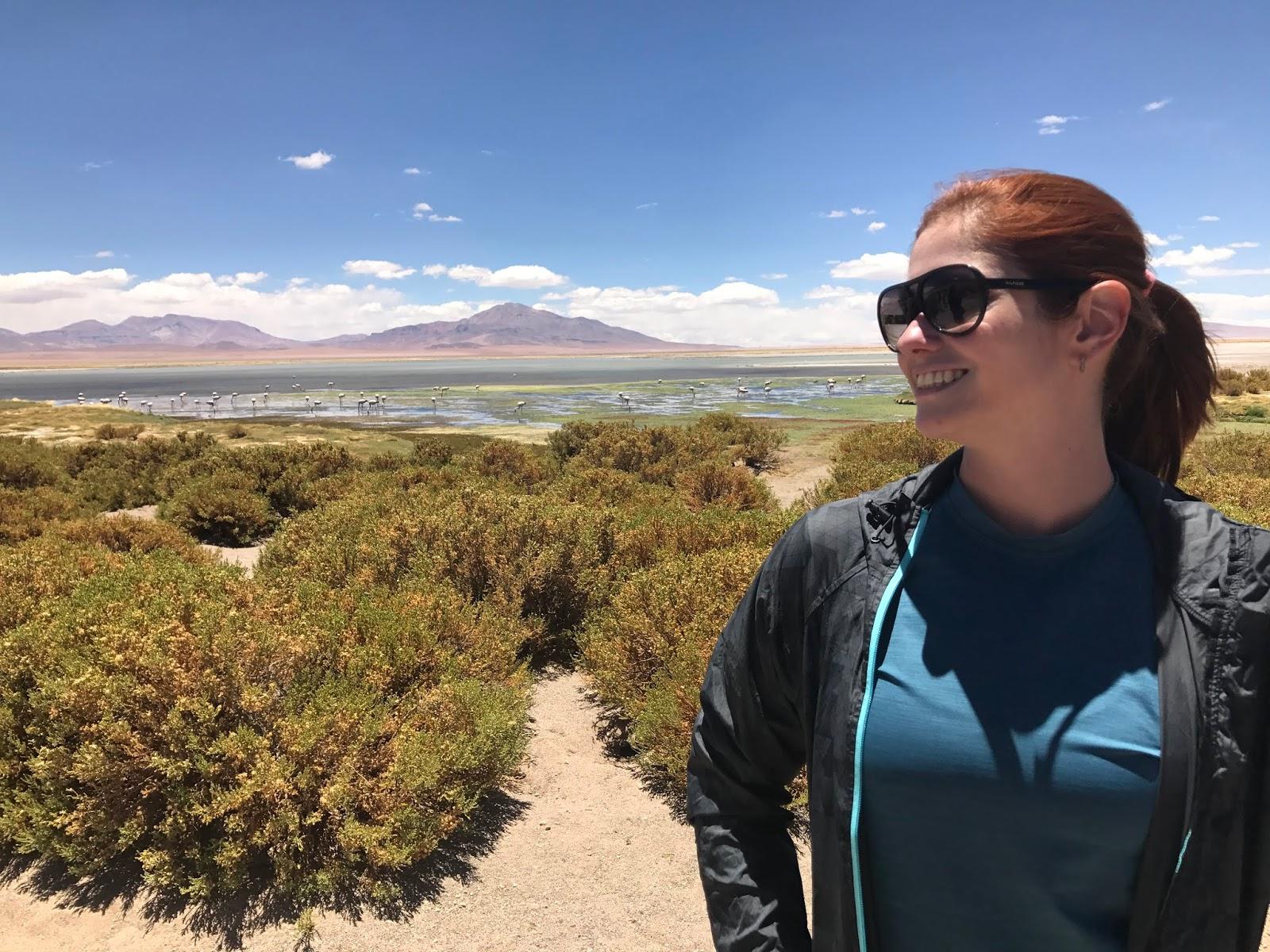 Salar de Tara - Deserto do Atacama