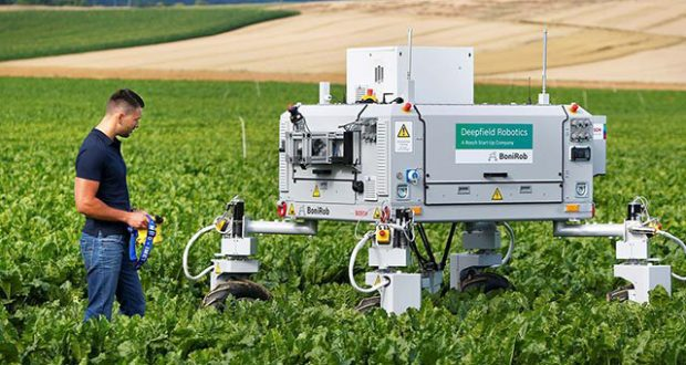 robots in Crop Weeding In Spring (Agricultural Robot)