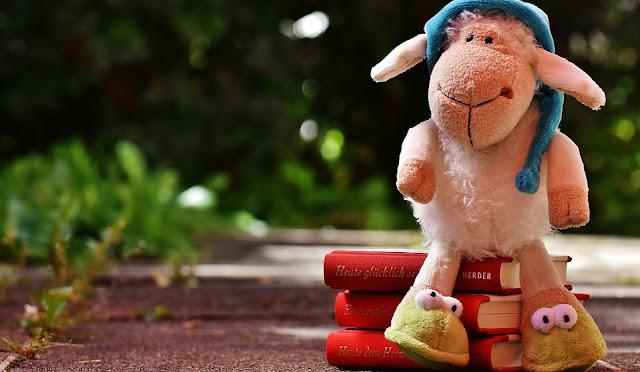 Image: Sleepytime Books, by Alexas_Fotos on Pixabay