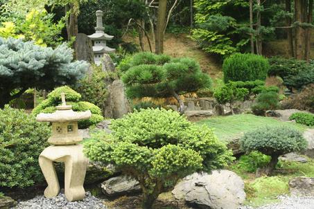 Asian Garden Photos 37