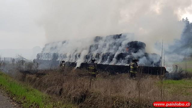 Incendio al interior de fundo de la comuna de Osorno