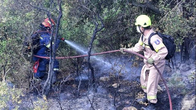 Πυροσβεστική για την πυρκαγιά στο Σχίνο : «Βελτιώνεται η εικόνα - Περιμένουμε αναζωπυρώσεις σε διάφορα σημεία»