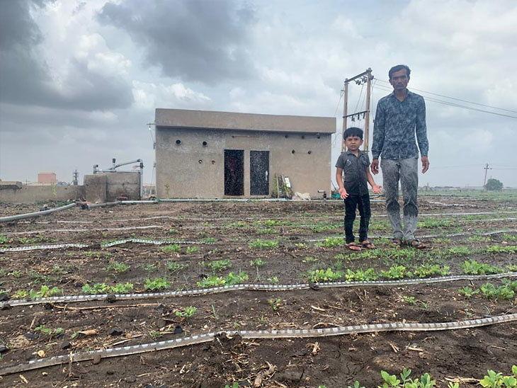 Cheap drip irrigation system