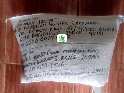 Benih Pesanan HILMAN HIDAYAT Bandung, Jabar. (Setelah packing)