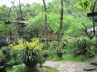 Orchid Garden on Ham Rong mount