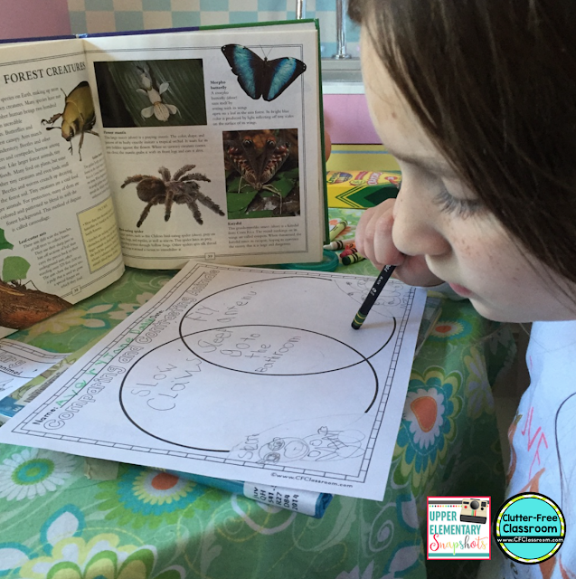 102 FREE Projects Worksheets - Busy Teacher