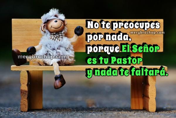 Frases de aliento y motivación cristiana con el Salmo 23, El Señor es mi Pastor, imágenes con frases de ánimo para amigos, mensajes cristianos de aliento por Mery Bracho