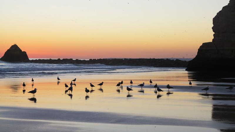 sin embargo el entorno desmerece muchsimo esta playa que seguramente en otro tiempo fue mucho ms bonita la infinidad de tursticos