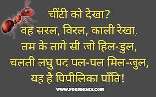 Chiti Ant poem hindi kavita png image hd pdf