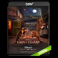 La dama y el vagabundo (2019) HDRip 1080p Audio Dual Latino-Ingles