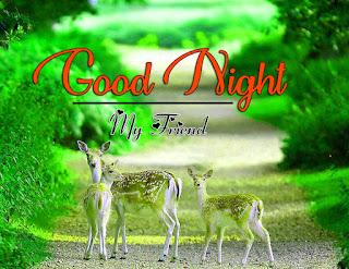 Latest Beautiful Good Night Wallpaper Free Download %2B19