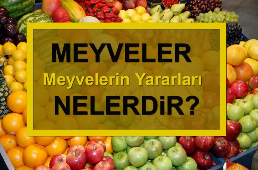 [Resim: Meyvelerin%2BYararlar%25C4%25B1%2BNelerdir.png]