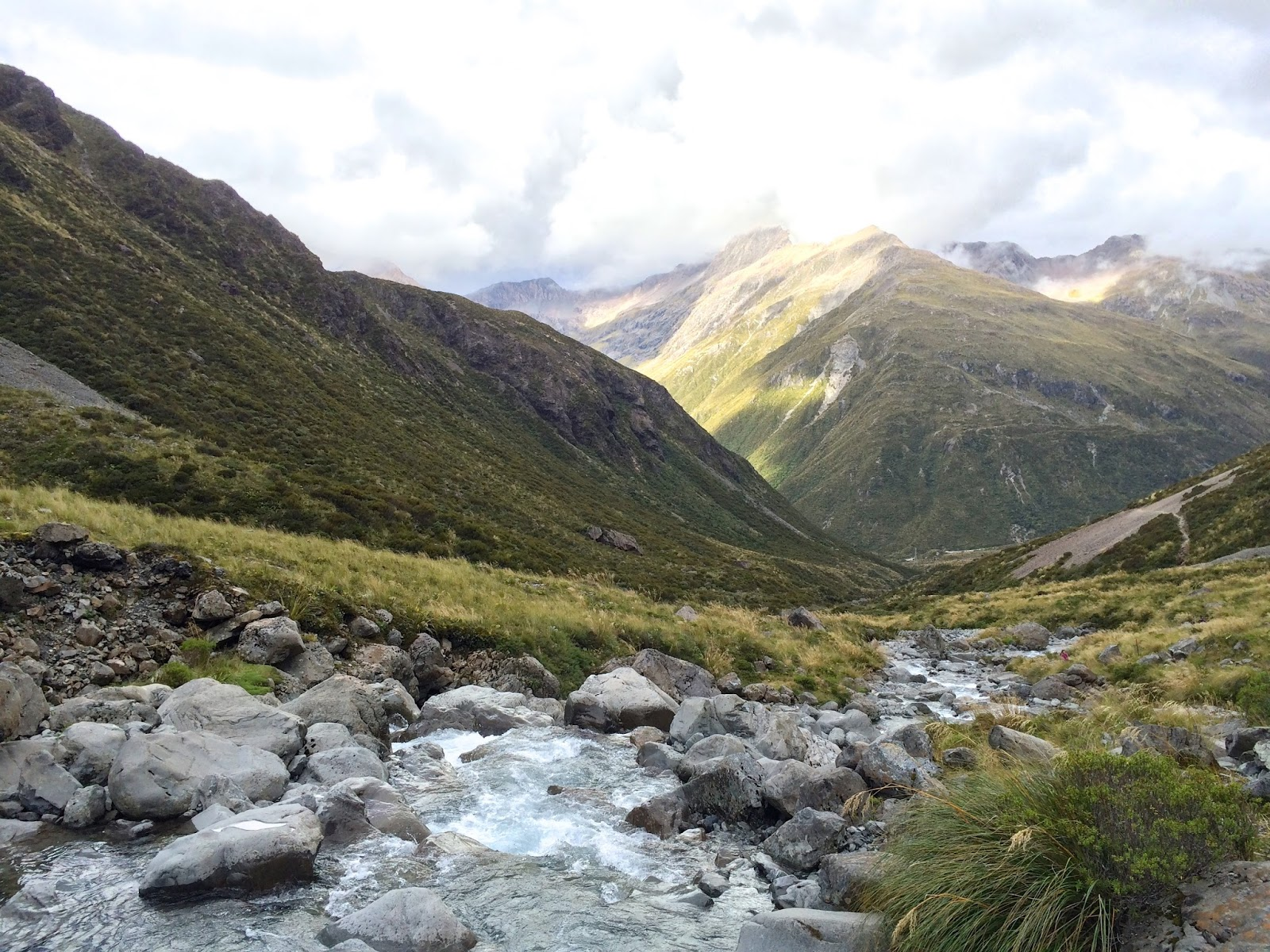 New Zealand's Best Hikes | Otira Valley Track Arthur's Pass