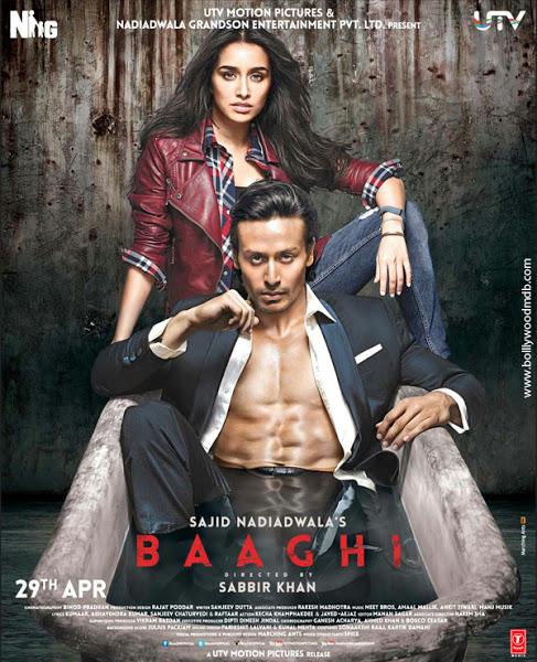 Baaghi 2016 720p Hindi Blu-Ray-Direct Links - Extra Movies