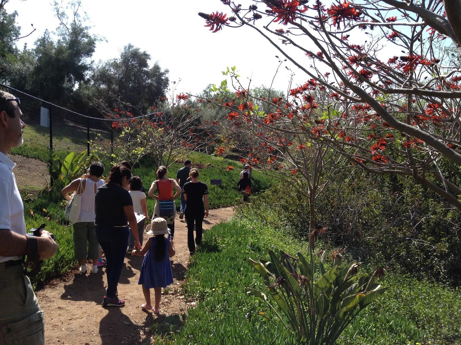 Alta Vista Gardens Blog – Medicine Wheel Garden Plans