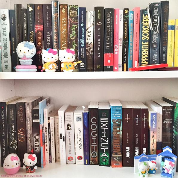Bibliothèque Livres et merveilles