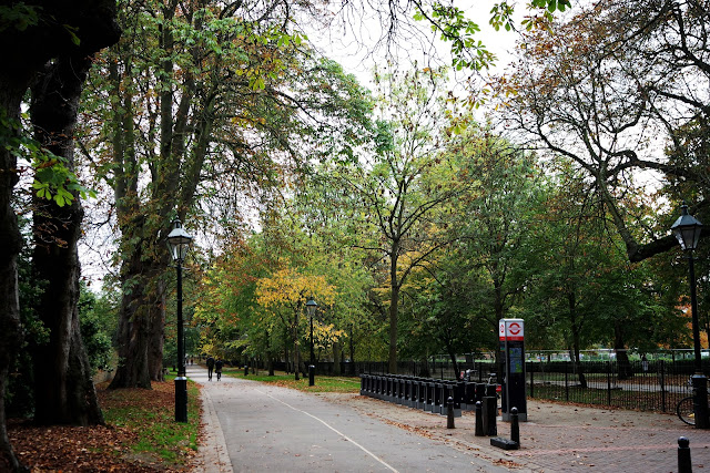 London, londres, blog, street, kensington, nothing hill, holland park, automun, fall in london