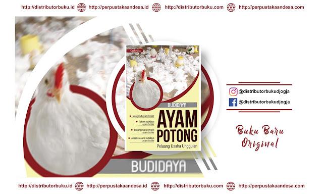 Budidaya Ayam Potong: Peluang Usaha Unggulan