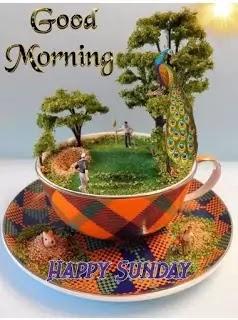 Sunday%2BGood%2BMorning%2B%2BImages%2BIn%2BHindi%2B%252832%2529
