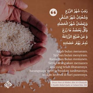 Dzun nun al-mishri