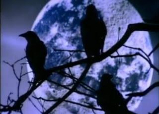 los tres cuervos el narrador de cuentos