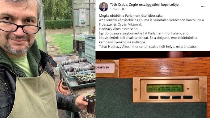Hadházy: Tóth Csaba kifogásolta, hogy nem jelentem meg tegnap a parlamentben, salátát kellett tűzdelnem