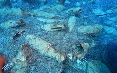 Κύπρος: Αρχαίο ναυάγιο εντοπίστηκε στην θαλάσσια περιοχή του Πρωταρά