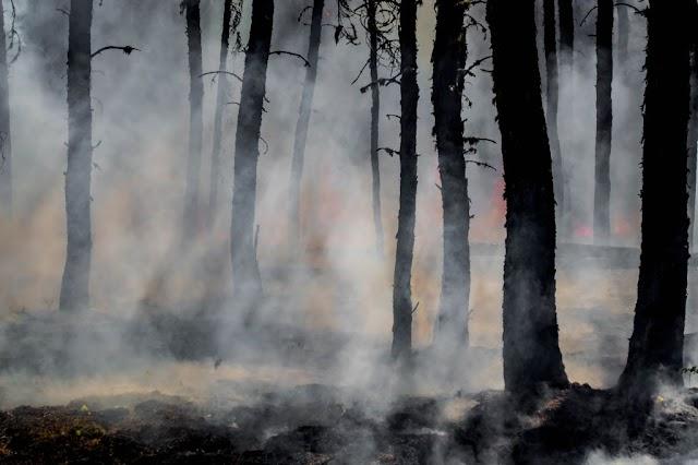 Σε κόλαση μετατρέπεται ο πλανήτης – Ακραία φαινόμενα καταστρέφουν τον κόσμο