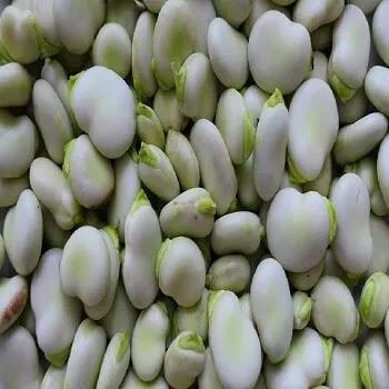 घेवडा, broad beans vegetables name in Marathi