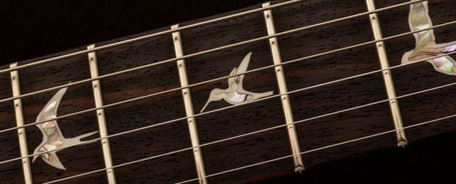 Pájaros de las Guitarras PRS (Aves)