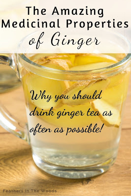 cup of tea with the words: health properties in ginger tea