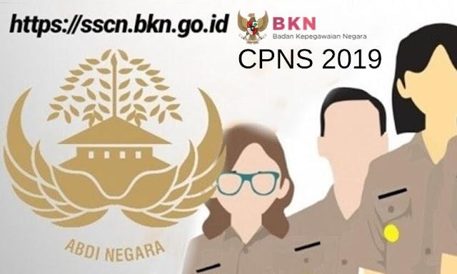 Catat, Info Resmi CPNS 2019, Formasi dan Link Pendaftaran