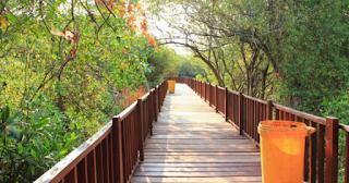 Taman Wisata Hutan Mangrove Wonorejo