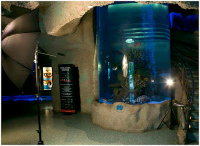 Strobist: QA: Cylindrical Aquarium Umbrella Reflections