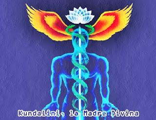 La Kundalini es una Energía infinita muy elevada y dinámica de la Madre Divina, que está enrollada en la base de la columna vertebral humana.