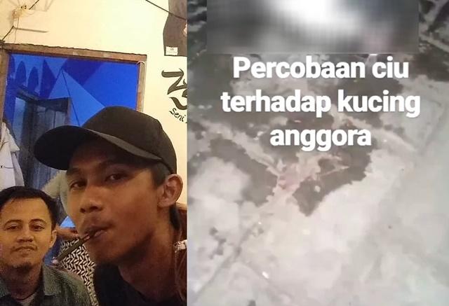 Video Viral Kucing Dipaksa Minum Ciu