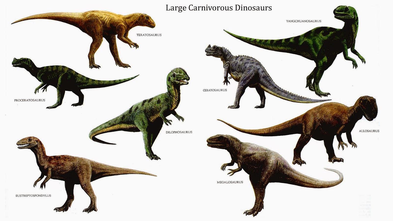 Que Es Un Dinosaurio Y Que No Lo Es Ciencia De Sofa Si bien no podía volar, podía efectuar movimientos semejantes a los que realizan las aves modernas. que es un dinosaurio y que no lo es