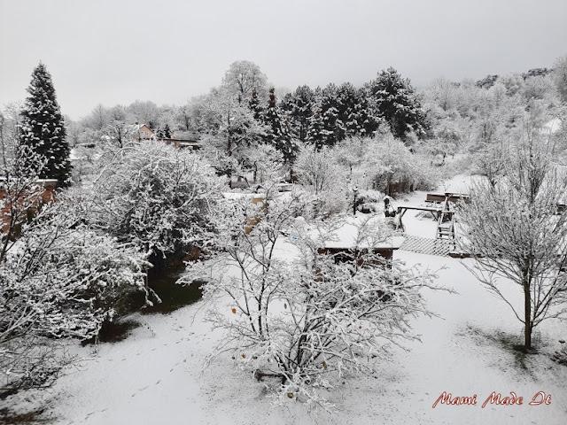 Schnee im Garten - Snow in the yard