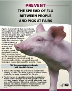 pathophysiology of swine flu pdf
