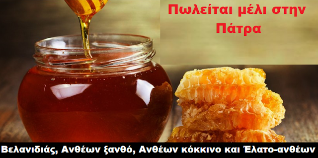 Πωλείται μέλι σε τιμή χονδρικής στην Πάτρα