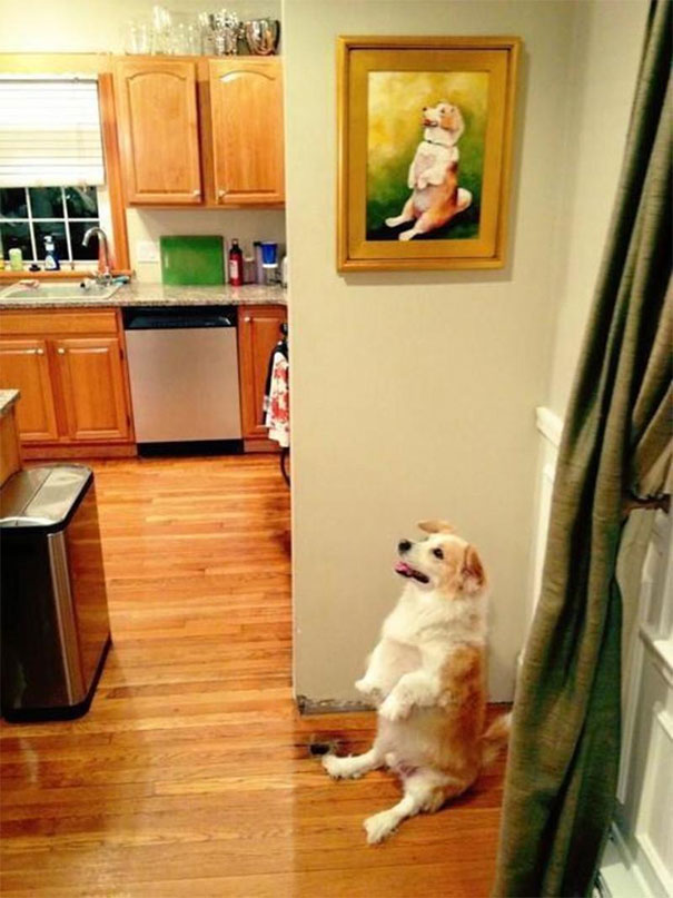 34 Funny Pictures Of Life Mimicking Art