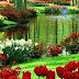 Plantas y flores: TODO acerca del reino que da la vida