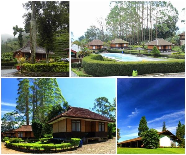 Villa Gunung Mas Puncak Bogor