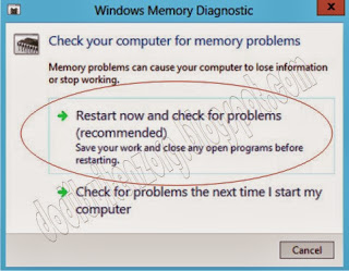 Windows Memory Diagnosa